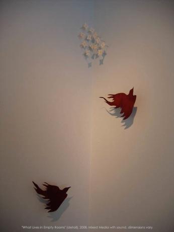 bird_portfolio